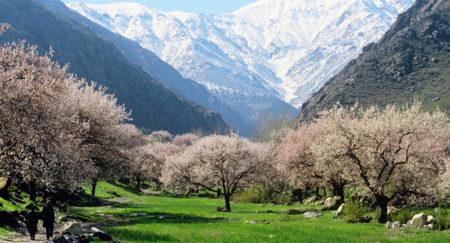 Требования к паспорту и другим документам при въезде в Таджикистан из России